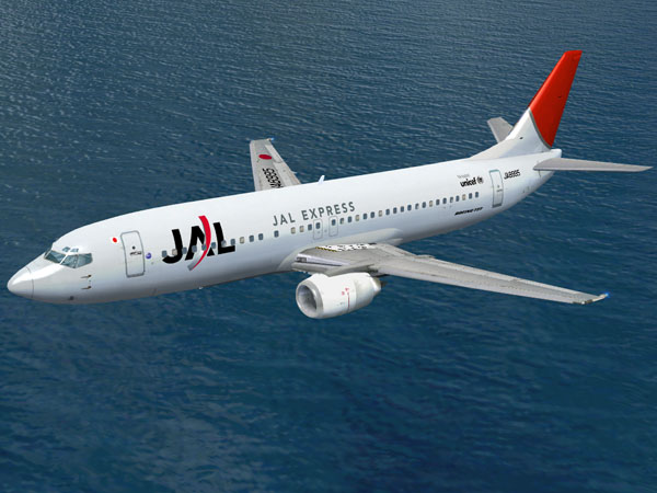 JAL JA8995